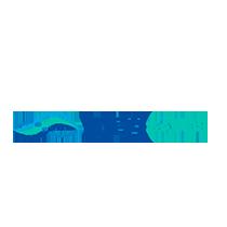 Logotipo-Liv-Saude